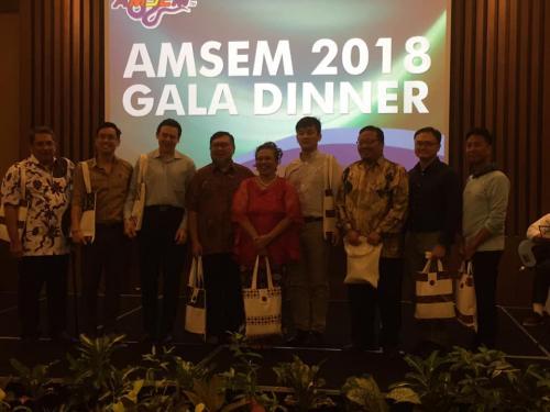 AMSEM 9